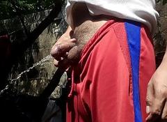 Chacal Orinando