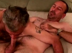 Gaysex mature bears getting deepthroated