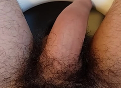 Penis expropriate erect when masturbated